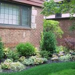 Professional NYC Landscaping